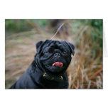 Black Pug Panting While Looking at Camera Greeting Card