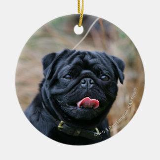Black Pug Panting While Looking at Camera Ceramic Ornament
