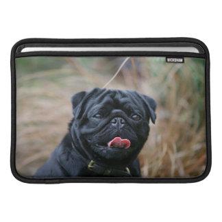 Black Pug Panting While Looking at Camera MacBook Air Sleeves