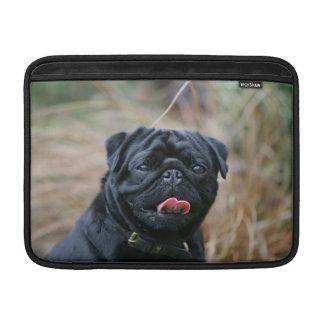 Black Pug Panting While Looking at Camera MacBook Sleeve