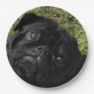black-pug.png paper plate