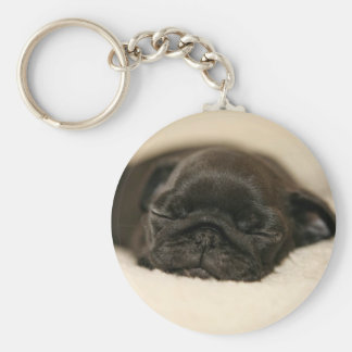 Black Pug Puppy Sleeping Keychain