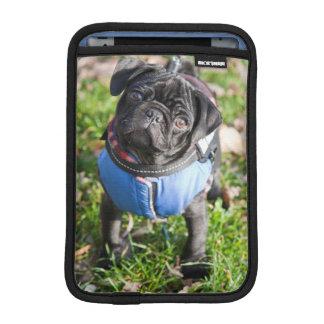 Black Pug Puppy Wearing A Jacket iPad Mini Sleeve