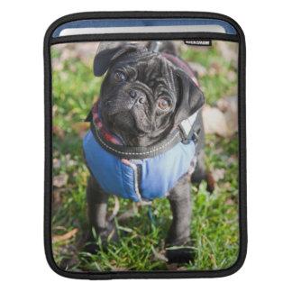 Black Pug Puppy Wearing A Jacket iPad Sleeve