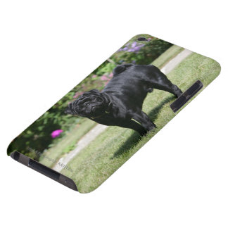 Black Pug Standing Looking at Camera Barely There iPod Case