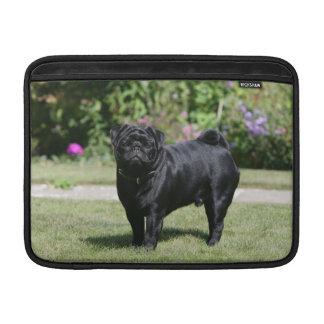 Black Pug Standing Looking at Camera MacBook Air Sleeve