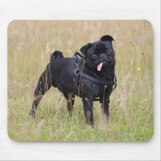 Black Pug Sticking Out Tounge Mouse Pad