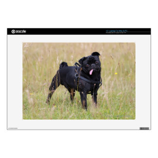 Black Pug Sticking Out Tounge Skin For Laptop