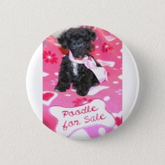 Black Puppy Poodle for Sale Pinback Button