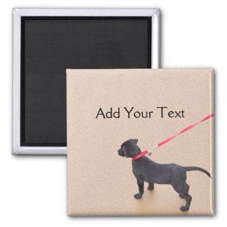 Black Puppy Prints on the Beach Magnet