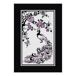 Black purple peacock and cherry blossoms posters