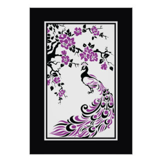 Black purple white peacock and cherry blossoms poster