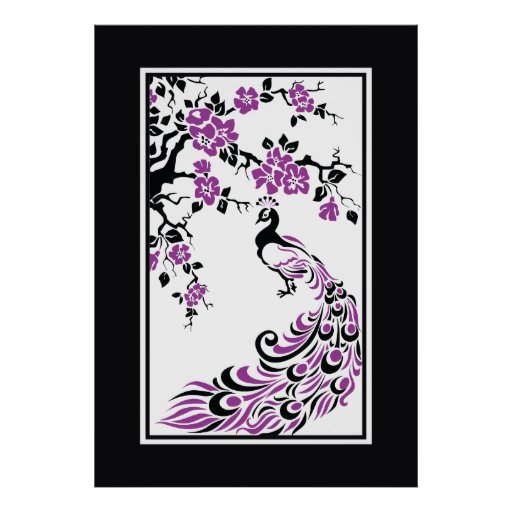 Black, purple, white peacock and cherry blossoms poster