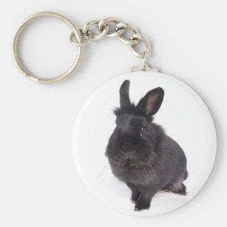black rabbit basic round button keychain