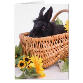 black rabbit tarjeta de felicitación
