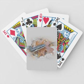 Black Rat Snake - Elaphe obsoleta obsoleta Bicycle Playing Cards