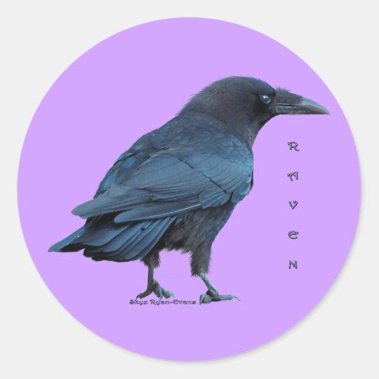 Black Raven Collection III Classic Round Sticker