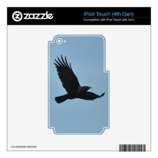 Black Raven Flying in Blue Sky Photo Decal For iPod Touch 4G