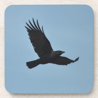 Black Raven Flying in Blue Sky Photo Drink Coaster
