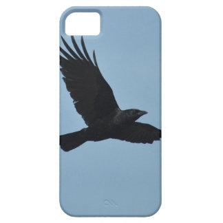 Black Raven Flying in Blue Sky Photo iPhone SE/5/5s Case