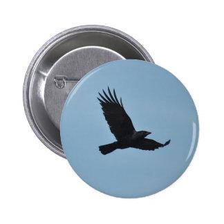 Black Raven Flying in Blue Sky Photo Pinback Button
