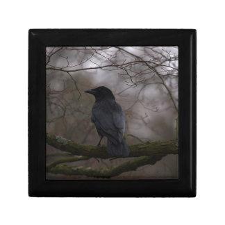 Black Raven Gift Box