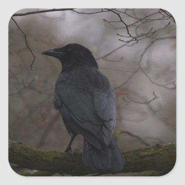 RavenWillow86 Black Raven Square Sticker