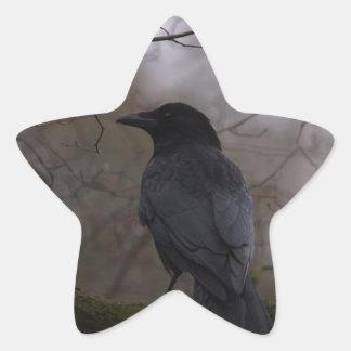 Black Raven Star Sticker