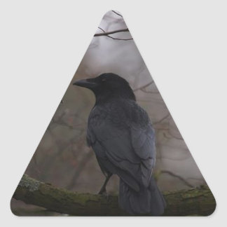 Black Raven Triangle Sticker