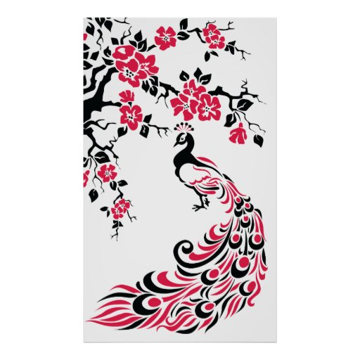 Black red peacock and cherry blossoms poster