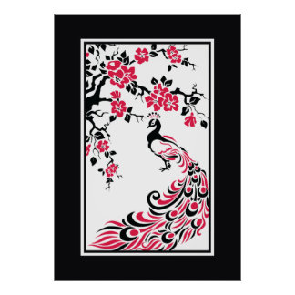 Black red white peacock and cherry blossoms posters