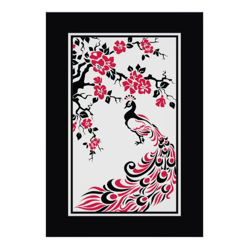 Black, red, white peacock and cherry blossoms posters