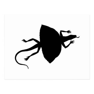 Black reptile postcard