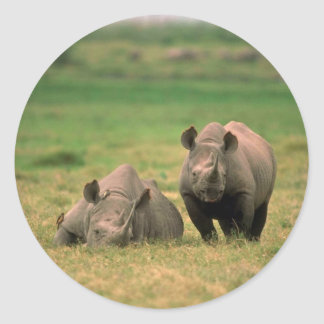 Black Rhino - Mother With Large Calf Classic Round Sticker
