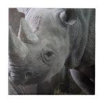 Black Rhinoceros Photo Ceramic Tile