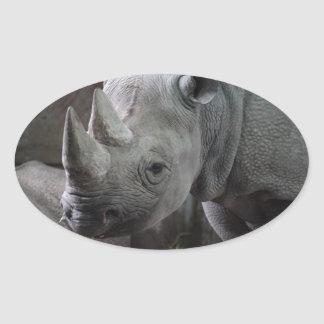 Black Rhinoceros Photo Oval Sticker