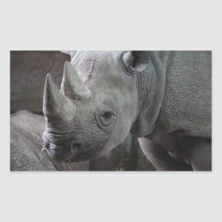 Black Rhinoceros Photo Rectangular Sticker