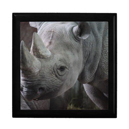 Black Rhinoceros Photo Trinket Box