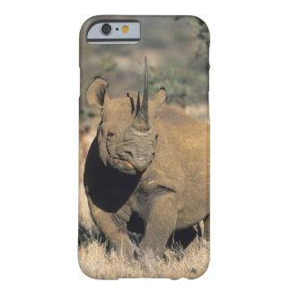 Black Rhinocerous, (Diceros bicornis), Northern Barely There iPhone 6 Case