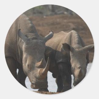 Black Rhinos Sticker