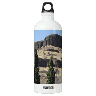 Black Rock and Cypress Water Bottle