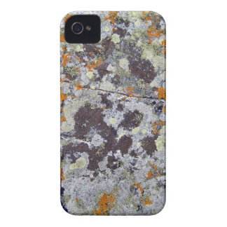 Black Rock with Orange and White Lichens iPhone 4 Cases