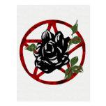 Black Rose and Pentagram Postcard