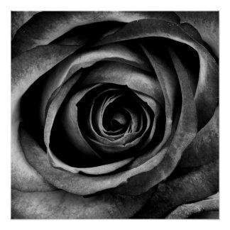 Black Rose Flower Floral Decorative Vintage Poster