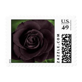 Black Rose Postage Stamps