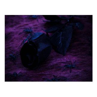 Black Rose Postcard