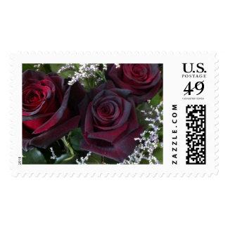 'Black' Roses Postage Stamp