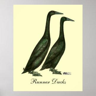 Black Runner Ducks Print