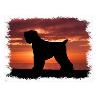 Black Russian Terrier Postcard