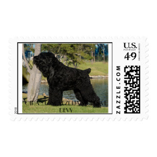 Black Russian Terrier US Postage